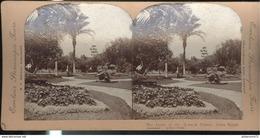Photo Stéréoscopique Opaque 17,5 X 9 Cm - Le Caire - La Pelouse Du G'Zerah Palace - Photos Stéréoscopiques