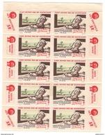 Planche 10 Vignettes Comité National De Défense Contre La Tuberculose 1950 - Erinnophilie