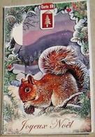 écureuil Magnifique Carte 3D Joyeux Noel - Noël