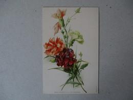 FLEURS  RAPHAEL TUCK & FILS  SERIE 1.   6. - Blumen