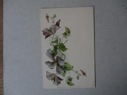 GLYCINE  RAPHAEL TUCK & FILS  SERIE I.   1. - Blumen