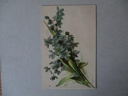 FLEURS BLEUES 1901 RAPHAEL TUCK & FILS UN MOT A LA POSTE SERIE 11. 10 - Blumen