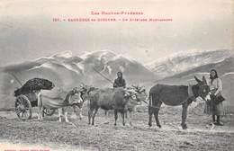 Bagnères De Bigorre (65) - Un Attelage Montagnard - âne - Bagneres De Bigorre