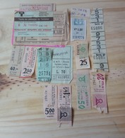 19 LOT OF 14, TICKETS OF BUS, ISRAEL, ARGENTINE, ITALY,  AND ODETHS. - Transportation Tickets