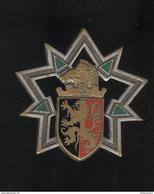 Insigne 3ème Régiment Du Génie - Drago - France