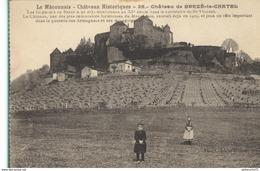 CPA  Berzé Le Chatel - Château Historique - Non Circulé - Other Municipalities