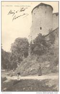CPA Mont St Jean - Château -  Circulée - Autres Communes