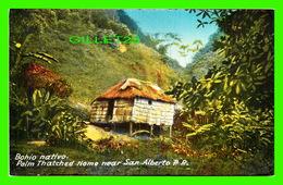 SAN ALBERTO, PUERTO RICO - BAHIO NATIVO, PALM THATCHED HOME - TRAVEL - GONZALEZ PADIN CO INC - - Puerto Rico