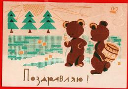 Congratulations Bear Bear Bear Honey Barrel Bee Signed - Orsi