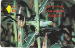 OMAN(GPT) - Rose Ringed Parakeet, CN : 41OMNK/B, Used - Oman