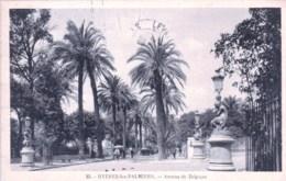 83 - Var - HYERES - Avenue De Belgique - Hyeres