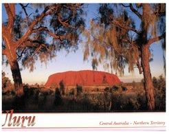 (963) Australia - NT - Uluru / Ayers Rock - Uluru & The Olgas