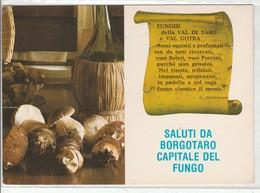 PARMA - SALUTI DA... - CAPITALE DEL FUNGO - FUNGHI......F7 - Parma