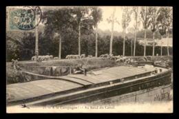 58 - A LA CAMPAGNE - AU BORD DU CANAL - TROUPEAU DE MOUTONS - PENICHE - France