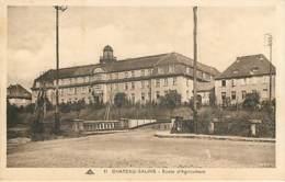 CHATEAU SALINS - école D'agriculture - 11 - Chateau Salins