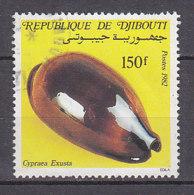 B0094 - DJIBOUTI Yv N°562 COQUILLAGE - Djibouti (1977-...)