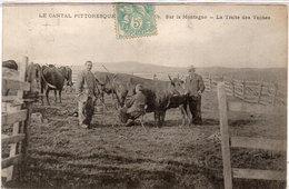 Le Cantal Pittoresque - Sur La Montagne - La Traite Des Vaches   (110049) - Non Classés