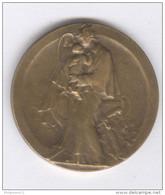 Médaille Assistance Maternelle Et Infantile - Bronze - 31 Mm - Professionals / Firms