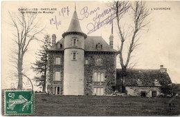 CHEYLADE - Le Chateau De Mouleyr   (110051) - France