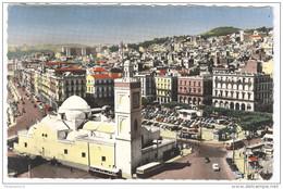 CPA Coloniale - Algérie - Alger - Place Du Gouvernement - Circulée En 1958 - Alger