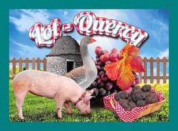 46 Lot Quercy Oie, Raisin, Cabane Borie, Champignons Funghi Truffes, Cochon Truffe - Champignons