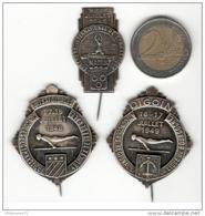 Lot De 3 Badges - Concours De Gymnastique Bourgogne 1946 à 1949 - Voir Description - Militares