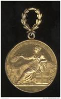 Médaille D'Or Société Nationale D'Encouragement Au Bien - Métal Doré - Non Attribuée - Professionals / Firms