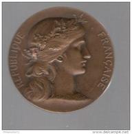 Médaille Ligue Maritime Française - Circa 1920 - Professionals / Firms
