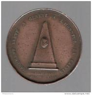 Médaille Suisse - Monument élevé à L'Honneur De Calvin à Genève - 1835 - Gettoni E Medaglie