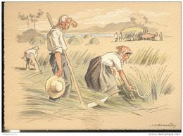CPSM Edition Barré Et Dayez - Illustrateur Bonnefoy - Croquis Régionaux : Fenaison Dans La Vallée - 1302A - Illustrators & Photographers