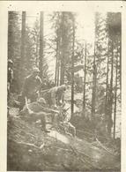 CpaALSACE , Guerre 14, Mitrailleuse En Batterie Dans La Forêt - Weltkrieg 1914-18