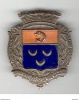 Badge émaillé Fédération Gymnastique Et Sportive Des Patronages De France - Bourgoin - 8 Juillet 1923 - France