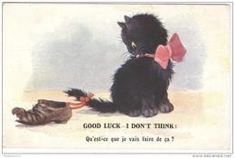 """CPA Illustrée Chats - """"Qu'est-ce Que Je Vais Faire De ça?"""" - Circulée En 1921 - Cats"""