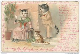 CPA Illustrée Chats - Famille - Circulée En 1902 - Gatos