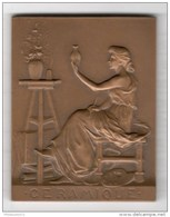 Plaque De Bronze - Confédération Des Industries Céramiques De France - Attribuée 1953 - Professionals / Firms