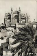5-PALMA(MALLORCA)1082-LA CATEDRAL - Mallorca