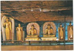 Image House Of Cave Temple Dambulla  - Sri Lanka - Sri Lanka (Ceylon)