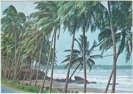 Beach Scene  - Sri Lanka - Sri Lanka (Ceylon)