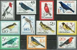 MDB-BK9-261-2 MINT ¤ URUGUAY 1962 11w In Serie  ¤ OISEAUX - BIRDS OF THE WORLD - VOGELS - Passereaux