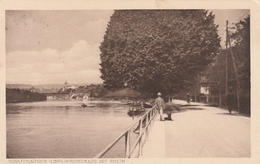 SchaffhausenLindlipromenade Mit Rhein - SH Schaffhouse