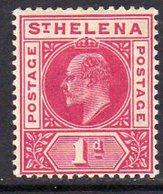 St. Helena EVII 1902 1d Carmine Definitive, Wmk. Crown CA, Hinged Mint, SG 54 - Saint Helena Island