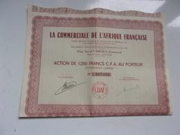 LA COMMERCIALE DE L'AFRIQUE FRANCAISE (douala-cameroun) - Shareholdings
