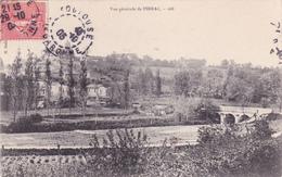 PIBRAC - Vue Générale - Pibrac