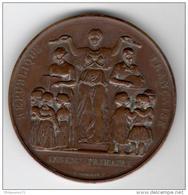 Médaille Enseignement Primaire - Ecole Communale 36 Rue Violet  - Bronze  - Attribuée 1888 - Professionals / Firms