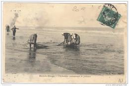 CPA Berck Plage - Pêcheuses Ramassant Le Poisson - Circulée - Berck