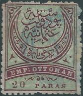 Turchia Turkey Ottomano Ottoman 1876 - 20 Pa, Violet / Green -Used, Value € 20.00 - 1858-1921 Ottoman Empire