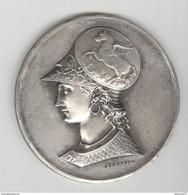 Rare Médaille Athéna + Pégase Sur Le Casque - Superbe Gravure De Desaide Père - Non Attribuée - Professionals / Firms