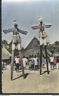 CPSM Coloniale - Les échassiers De Man - Non Circulée - Afrique