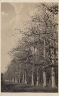 9097-VILLAGGIO DUCA DEGLI ABRUZZI(SOMALIA)-I CAPOCH-1935-EX COLONIE ITALIANE-FP - Altre Guerre