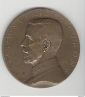 Médaille Suède / Sweden  - Malmö - Exposition De La Baltique 1914 - Gustaf V Sveriges Konung - Gettoni E Medaglie